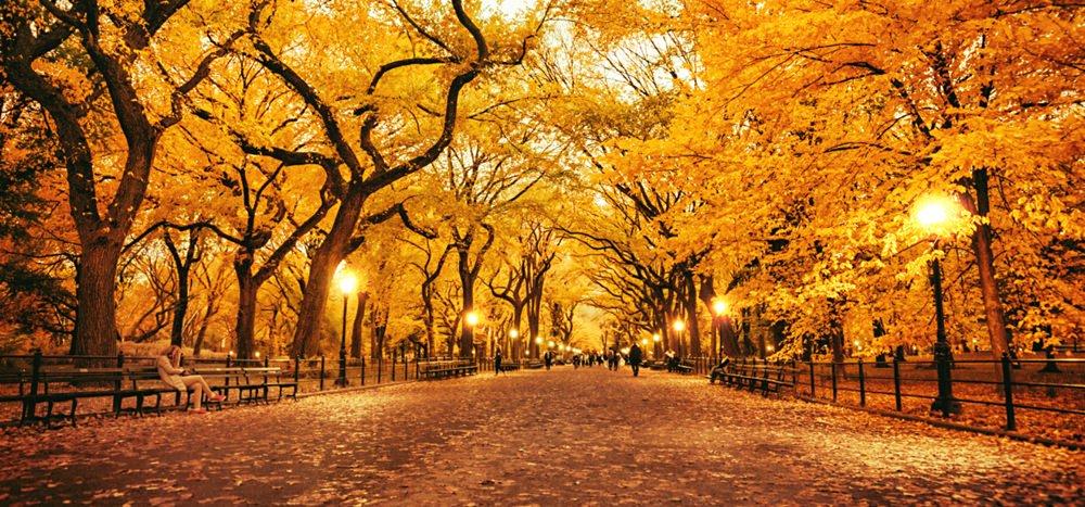 Fall's Fresh Start