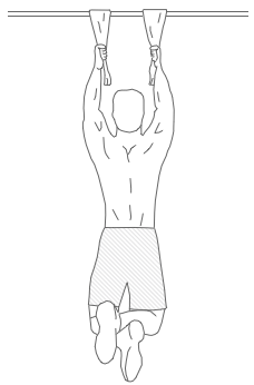 Towel-Grip Dead Hang Exercise