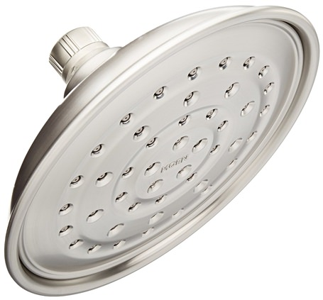 Moen Invigorain Shower Head