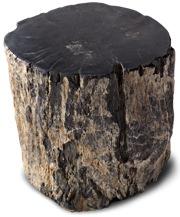 RH Petrified Wood Stump Table