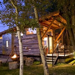 The coolest tiny vacation homes you can rent right now for Tiny house vacation home