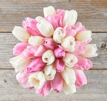 The Bouqs Pink and Whit Tulips Bouquet