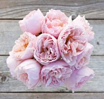 The Bouqs Garden Rose Bouquet