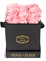 Venus et Fleur Le Mini Box of Spray Roses