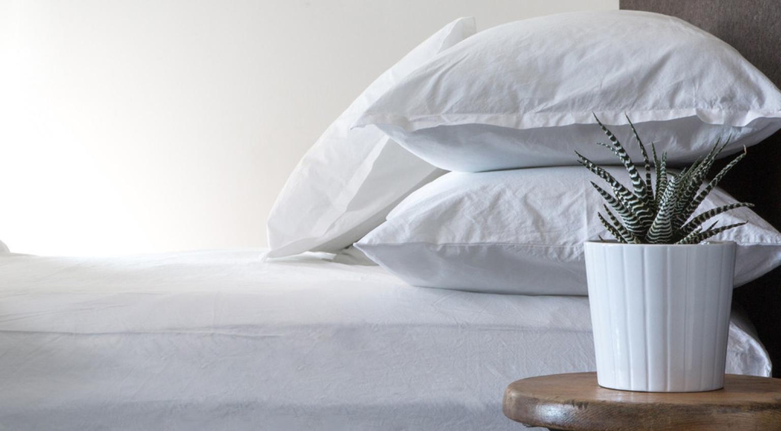Better Bedding