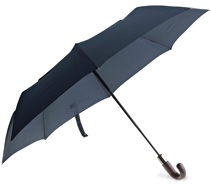 ShedRain Umbrella