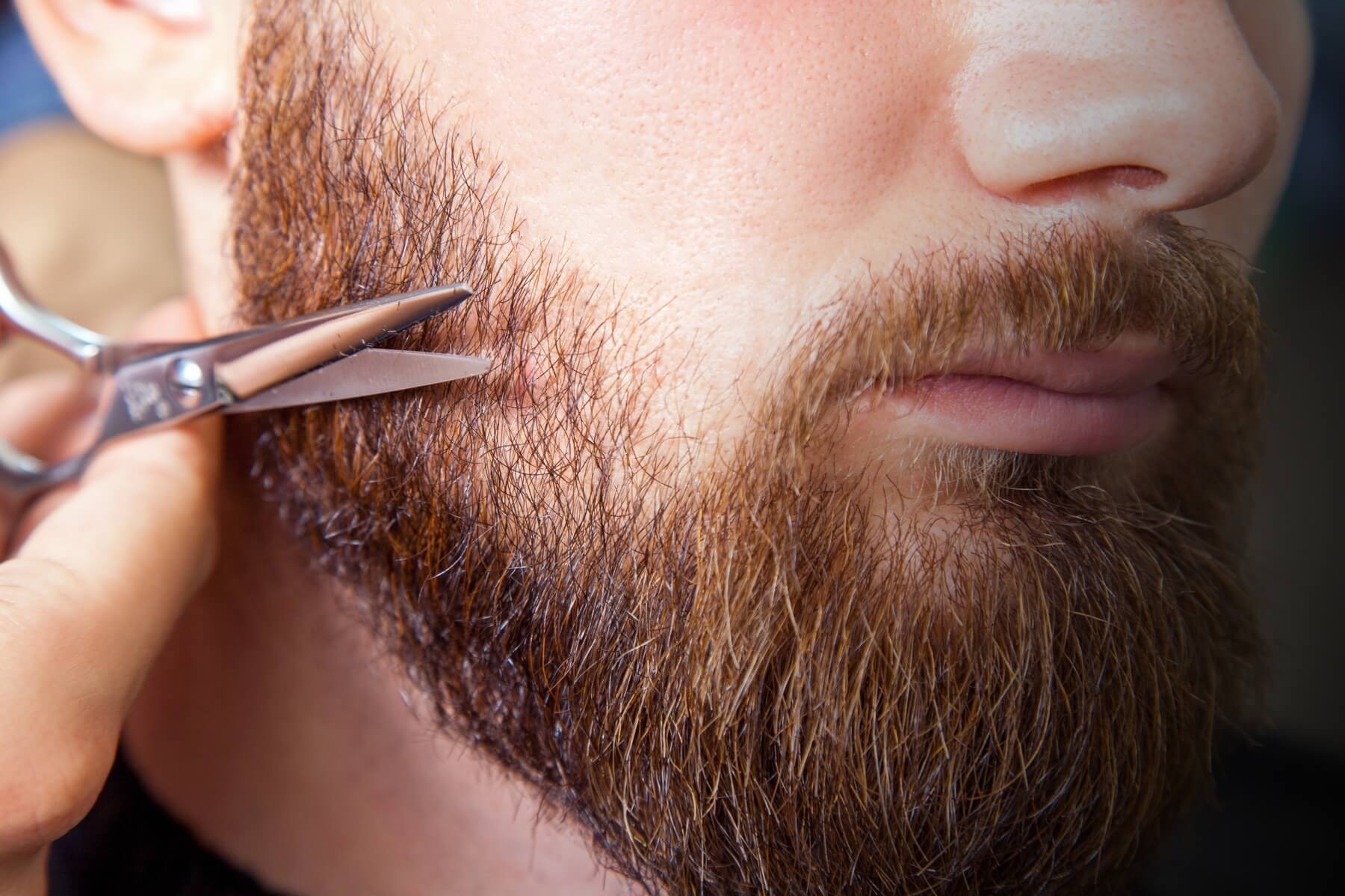 Beard and facial hair maintenace guide