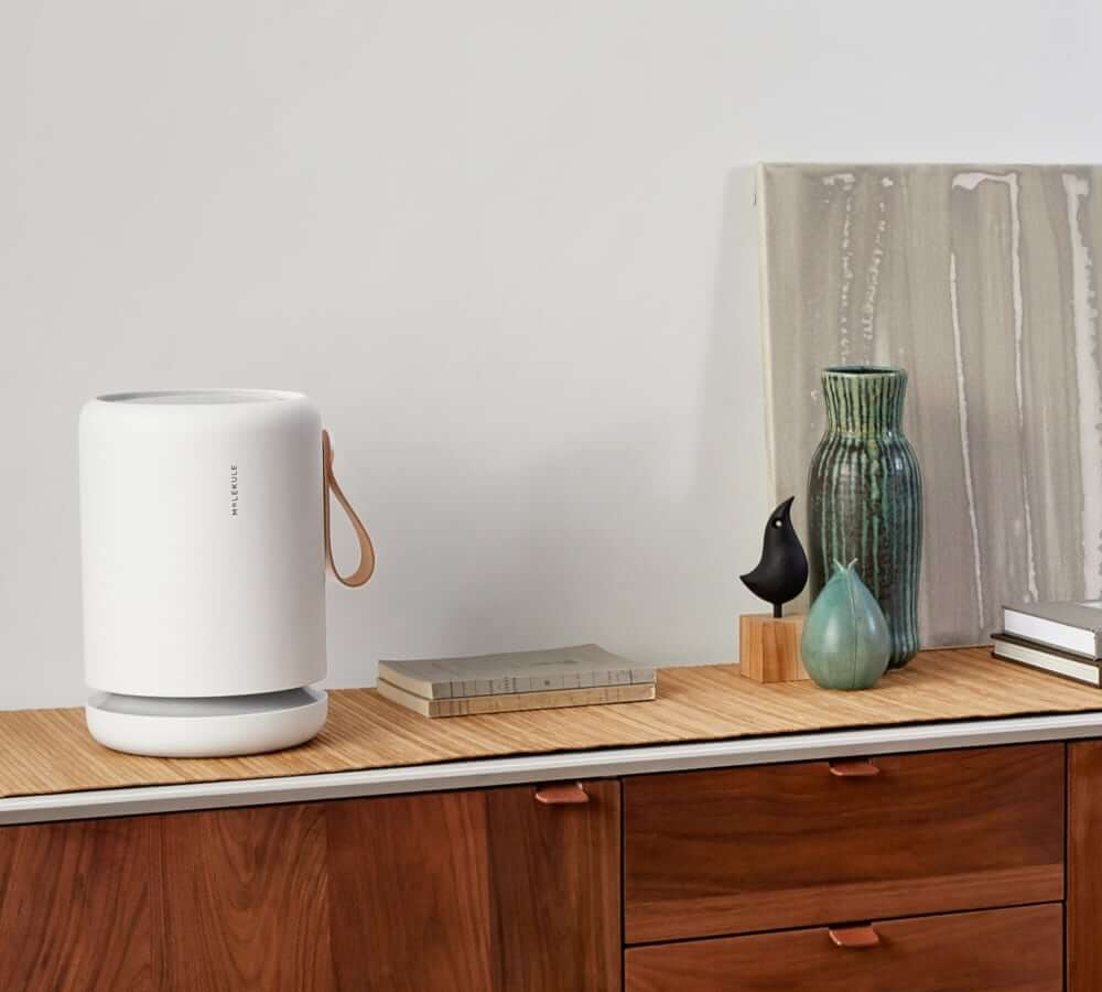 Best home air purifiers in 2021