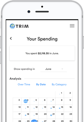 Trim Financial Spending Analysis Tool