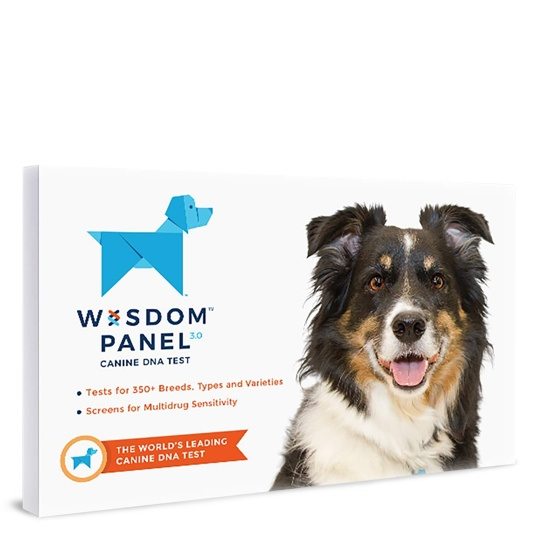 Wisdom Health Dog DNA Test Kit