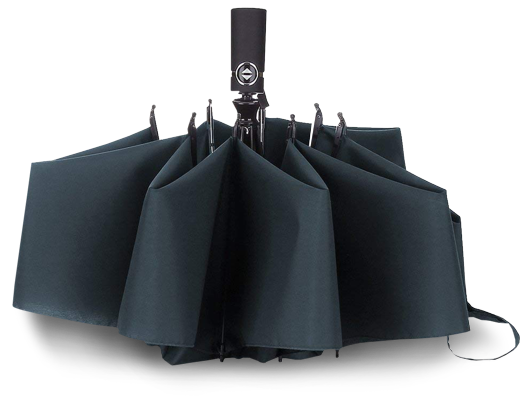 Lanbrella Windproof Compact Umbrella