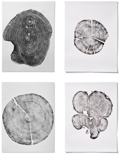 Erik Linton Fallen Treen Cut Print Art