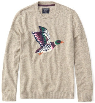 Abercrombie & Fitch Graphic Sweater