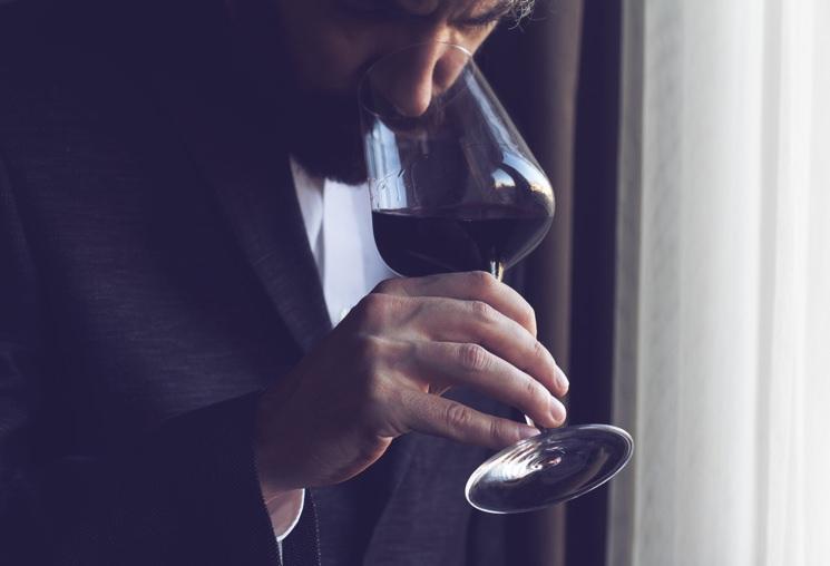 Guide to understanding wine